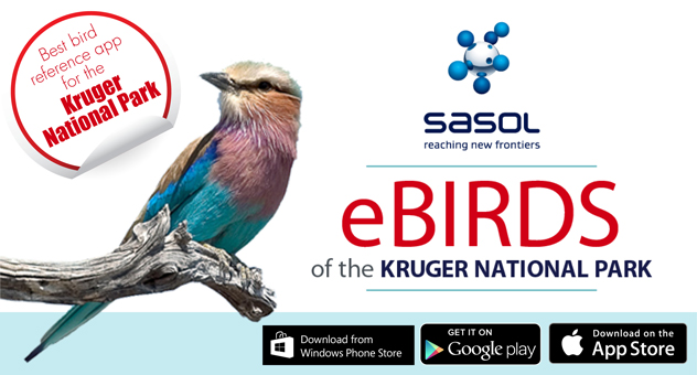Sasol Birds of the Kruger National Park
